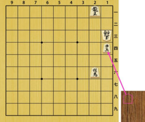 Fig3. Checkmate by dropped pawn is illegal